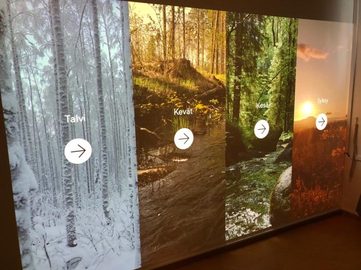 virtual-nature-wall